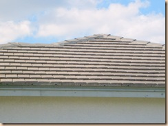 Tampa Non Pressure Roof Cleaning 026