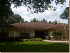 Tampa Roof Cleaning 027