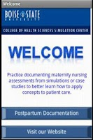 Screenshot of Postpartum Nursing Document