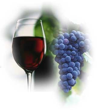 [WineGlassGrapes[6].jpg]