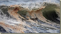 oil-wave-cp-orange-beach-alabama