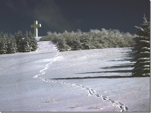 cross-winter