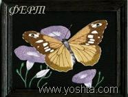 БАРХАТ~1