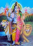 ardhanareshwara_tm.jpg