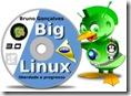 BIG Linux