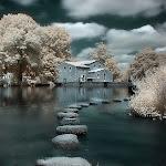 infraredphotography1.jpg