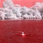 infraredphotography17.jpg