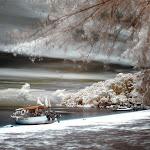 infraredphotography21.jpg