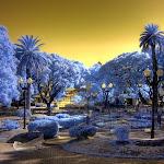 infraredphotography8.jpg