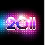 newyear 2011 (4).jpg