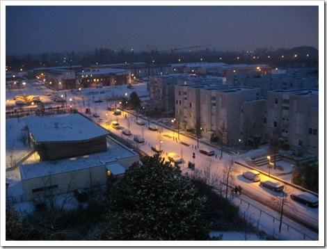 Kranichstein im Schnee