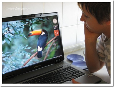 Dennis' Laptop