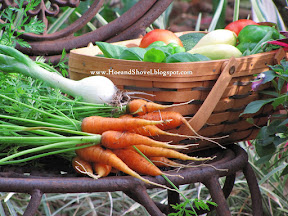Vegetable Gardening