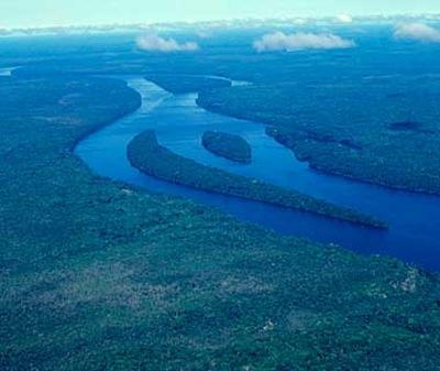 Central Amazon, Brazil and Peru