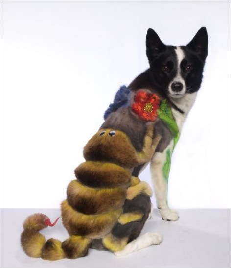 Here's a fishy tail! Dogs sculpted into works of art for extreme grooming contests 07