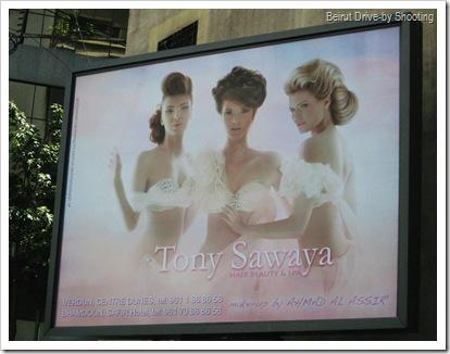 tonysawaya (3)