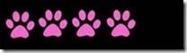 4 paws