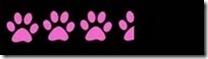 3.5 paws