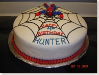 spidermancake 002