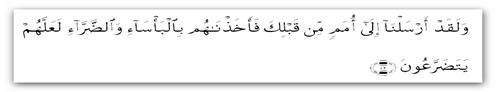 Al-An 'aam-42