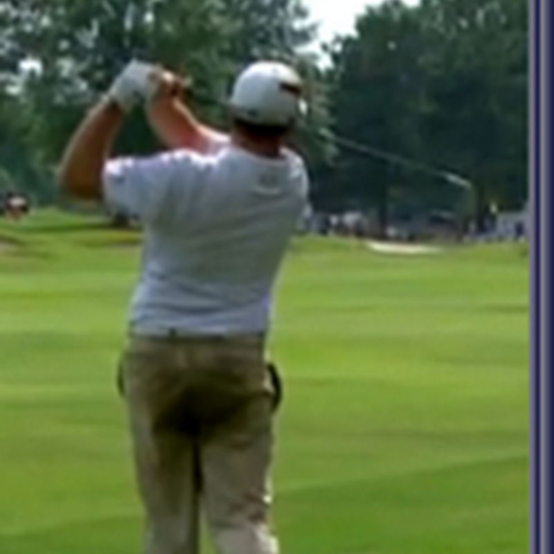 Garrigus Shoulder Injury. Official Claims Yanking Toilet Chain Too Hard