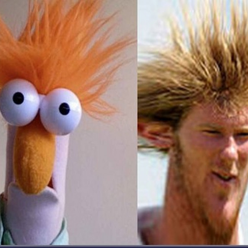 Chris Wood and Beaker? I'm Not Seeing The Resemblance