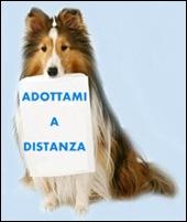 ad_dist