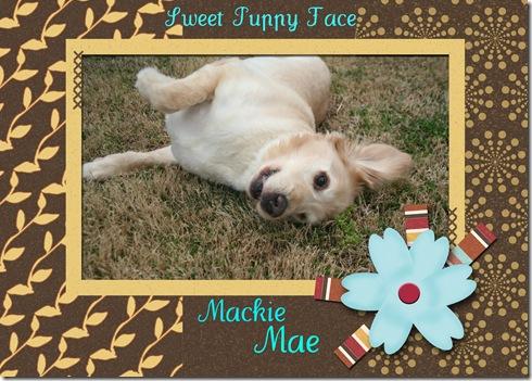 Mae Happy 2