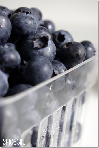 BlueberryChutney0015LG