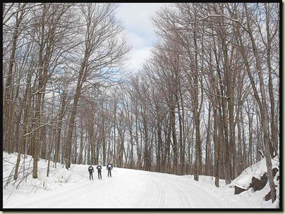 The wide boulevard that is Fortune Parkway - ski trail in winter, busy road in summer