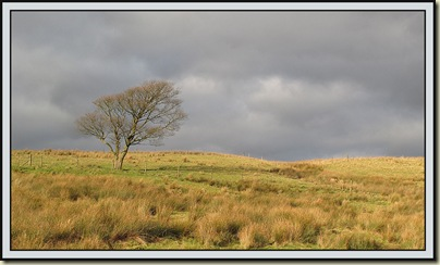 The landscape of Darwen Moor