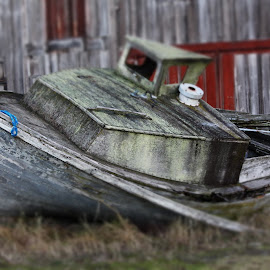 Stranded by T Mullaly - Transportation Boats ( stranded, old, wooden, displaced, boat )