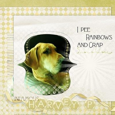 harvey10