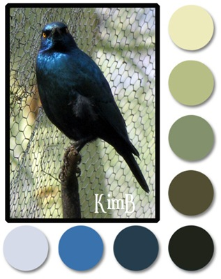 colourswatch1