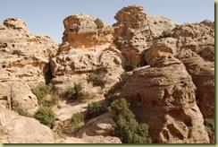 Rocks behind