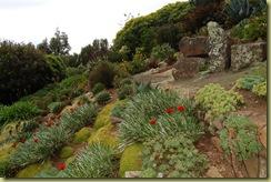 Castle Garden-1