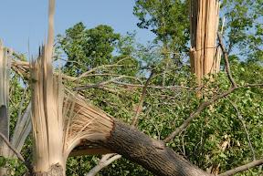 May 8, 2008 Tornado - 32.jpg