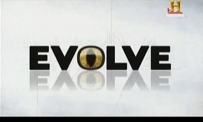 [Imagem: Evolucao.jpg]