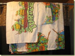 Turtle sheets