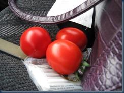 Em's tomatoes