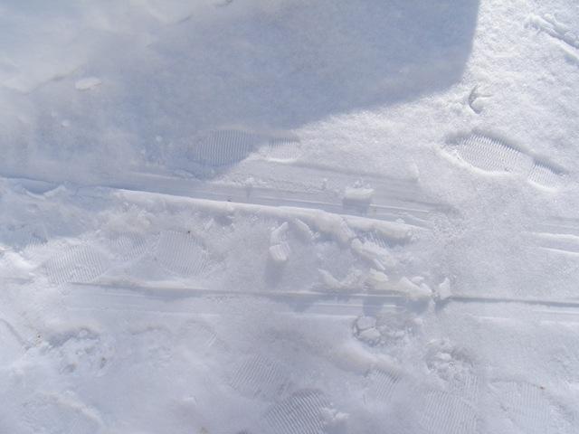 Febr2009 283