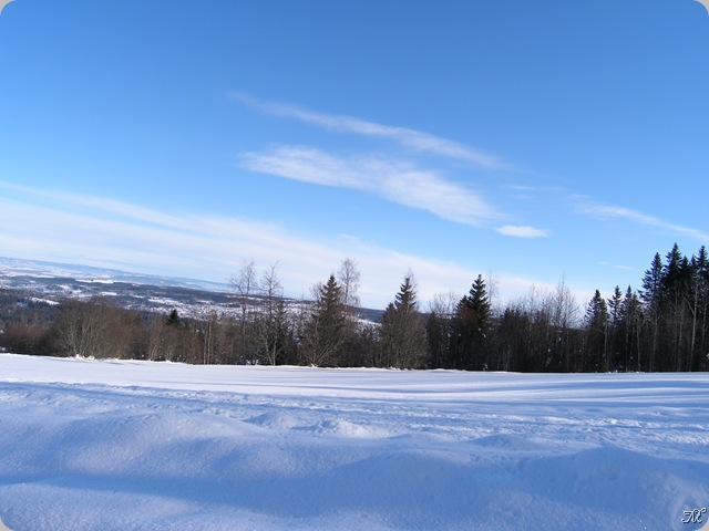 Febr2009 342