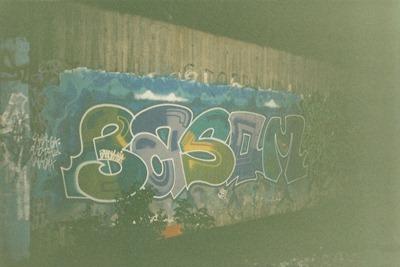 Basom 1993
