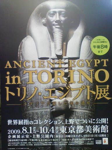 トリノ・エジプト展,ハセガワアツシのエゾノギシギシ用