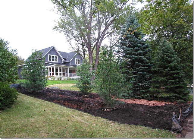 Neighbors Trees Close To Property Line