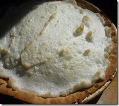pie 018