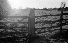 The-Fence-2---Film