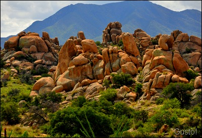 3. Rocks_0002gus