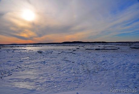 1. PRNWR sunset 1-22-11 gusto