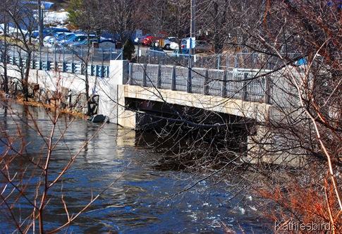 11. bridge k